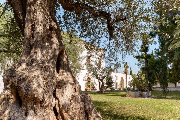 masseria-marzalossa-luxury-hotel-puglia-tipica-tour-dmc-005