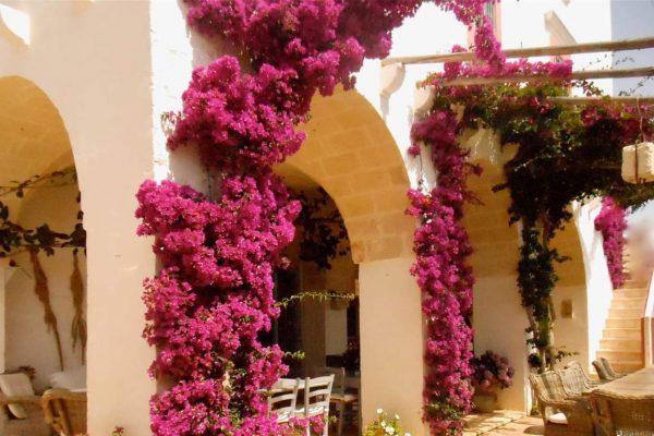 masseria-montenapoleone-luxury-hotel-puglia-tipica-tour-dmc-026